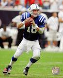 Peyton Manning 2010 Action Photographie
