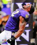 NFL Ray Lewis 2010 Action Photo