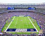 New Meadowlands Stadium 2010 (Giants) Photo