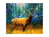 Alaskan Elk Giclee Print by Megan Aroon Duncanson
