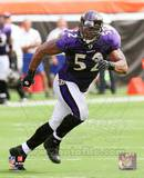 Ray Lewis 2010 Action Photo