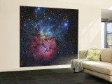 The Trifid Nebula Wall Mural – Large