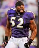 Ray Lewis 2010 Action Foto