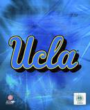 2010 UCLA Bruins Logo Photo