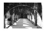San Jose 2 Impressão fotográfica por John Gusky
