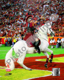 Traveler, the USC Trojans Mascot 2007 Photo