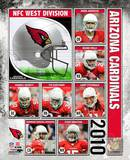 2010 Arizona Cardinals Team Composite Photo