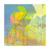 Water Lily Shadows Giclee Print by Jan Weiss