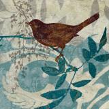 Songbird II Kunstdrucke von Carol Robinson