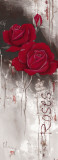 I Love Roses Posters by Franz Heigl