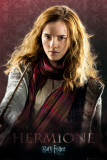 Harry Potter and the Deathly Hallows - Hermione Plakater