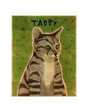 Tabby (grey) Posters by John Golden