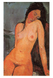 Seated Nude, c.1917 Prints by Amedeo Modigliani