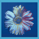 Daisy, c.1982 (Blue on Blue) Posters av Andy Warhol