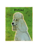 Poodle (grey) Posters by John Golden