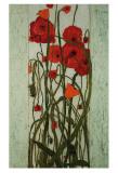 Jardín de amapolas Láminas por David Winston