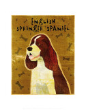 English Springer Spaniel Prints by John Golden