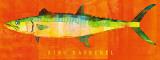 King Mackerel Poster par John Golden