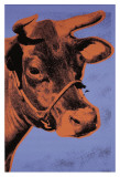 Cow, c.1971 (Purple and Orange) Print by Andy Warhol