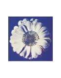 Flower for Tacoma Dome, c.1982 (Blue and White) Posters par Andy Warhol