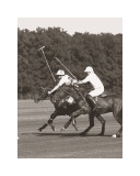 Polo In The Park III Prints by Ben Wood