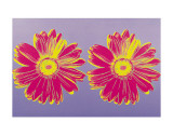 Daisy, c.1982 (Double Pink) Posters by Andy Warhol
