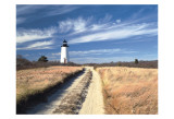 Cape Poge Lighthouse Print by Rezendes