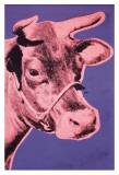 Kuh Poster von Andy Warhol
