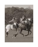 Polo dans le parc I Posters par Ben Wood