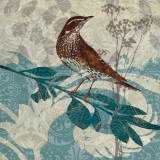Songbird I Prints by Carol Robinson