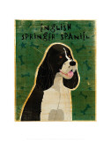English Springer Spaniel (black and white) Print by John Golden
