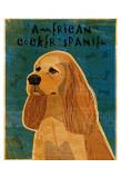 American Cocker Spaniel I Prints by John Golden