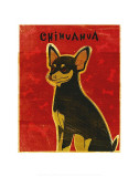 Chihuahua (black and tan) Prints by John Golden