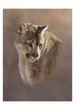 Watchful Eyes Prints by Kalon Baughan