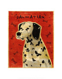 Dalmation Prints by John Golden
