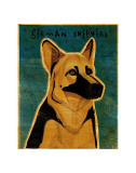 German Shepherd Prints by John Golden