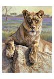 Leona del Serengeti Pósters por Kalon Baughan