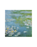 Nympheas at Giverny Poster von Claude Monet