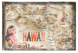Aloha Hawaii Poster