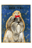 Shih Tzu Posters by John Golden