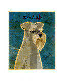 Schnauzer Prints by John Golden