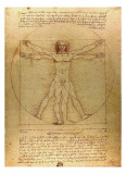 Vitruvian Man, c.1492 Posters by  Leonardo da Vinci