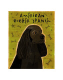 American Cocker Spaniel (black) Poster by John Golden