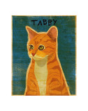 Tabby (orange) Prints by John Golden