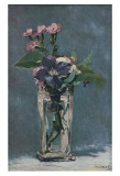 Carnations and Clematis in a Crystal Vase Poster von Édouard Manet