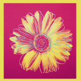 Marguerite (1982, fuschia et jaune) Affiches par Andy Warhol
