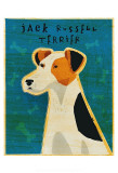 Jack Russell Terrier Posters by John Golden