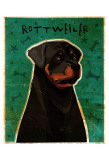 Rottweiler Prints by John Golden