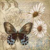 Sommerfuglehave I, Butterfly Garden I Plakater af Conrad Knutsen