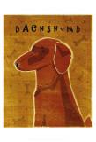 Dachshund (red) Plakater af John Golden